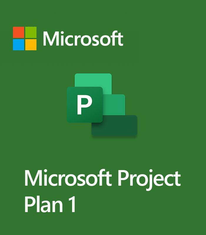 Pepas Cloud Microsoft Project Plan 1